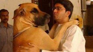 राज ठाकरे, राज ठाकरे पत्नी शर्मिला ठाकरे, शर्मिला ठाकरे, पालतु कुत्ता, सर्जरी, raj thackeray, Raj Thakeray wife sharmila thakeray, sharmila thakeray, 65 stiches, pet dog, plastic surgery