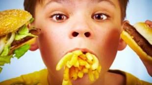 junk food, junk food harmful for lever, health news