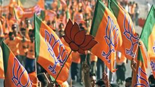 BJP, BSP, BJP vs Mayawati, Mayawati News, Mayawati latest news, BJP latest news, Amit Shah news, Amit Shah latest news