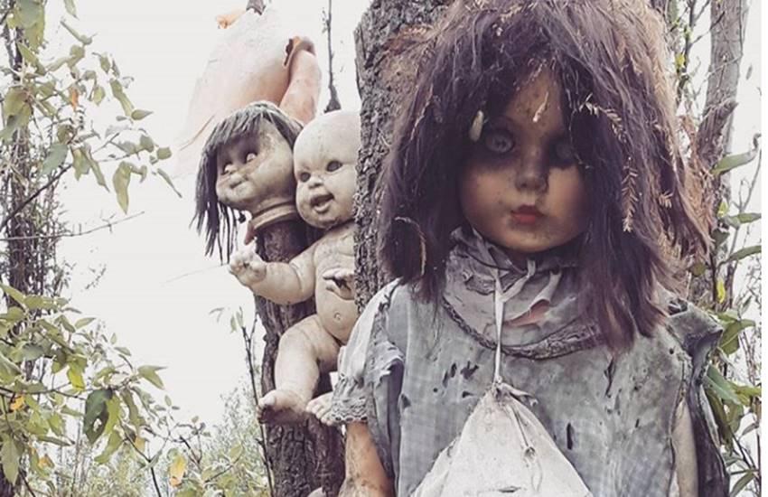 इस आइलैंड पर रहस्मयी तरीके से पेड़ पर लटकी हैं हजारों डरावनी डॉल्स, पढ़ें  पूरी कहानी - Jansatta