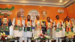Jharkhand Assembly Election 2019, BJP manifesto