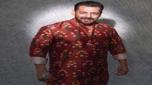 salman khan, big boss