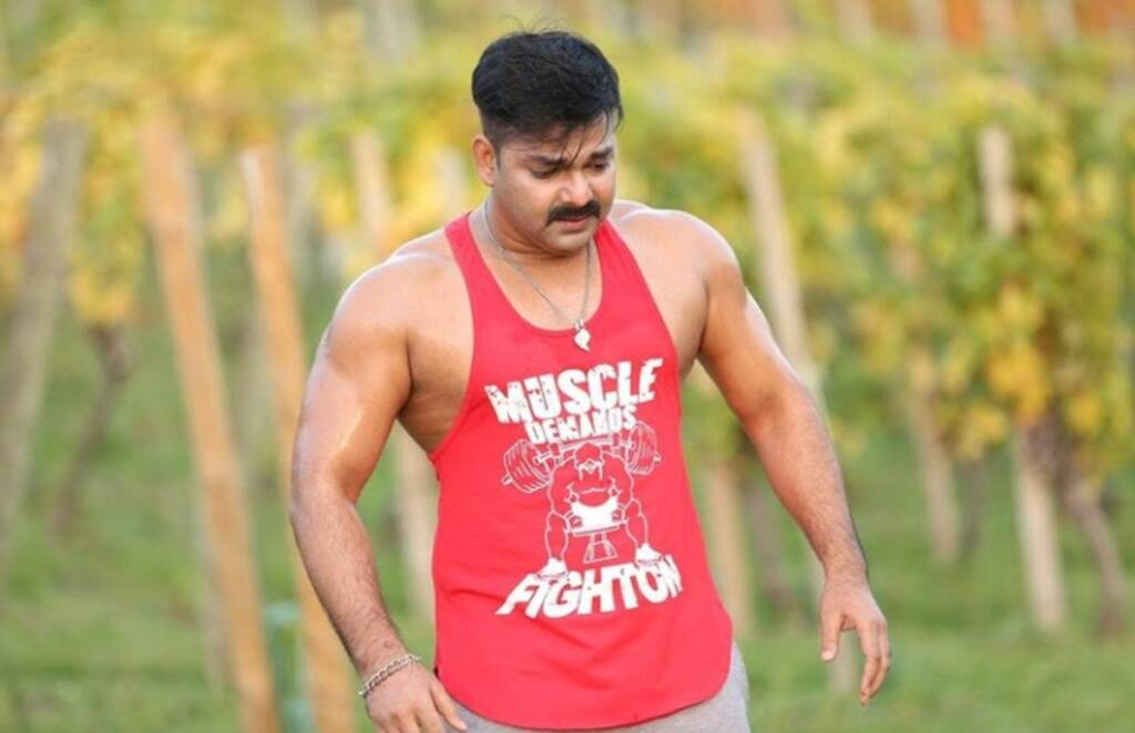 pawan singh, bhojpuri cinema, pawan singh action film