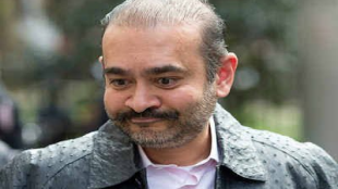 nirav modi, uk high court, application against extradition, pnb scam, modi government