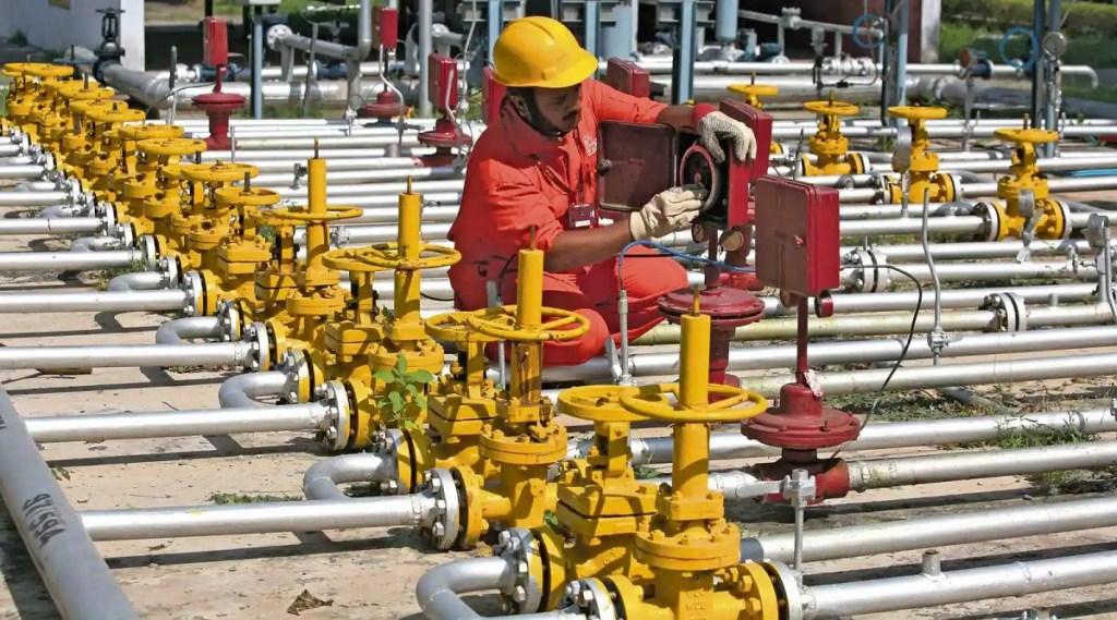 Adani Total Gas, Adani Group