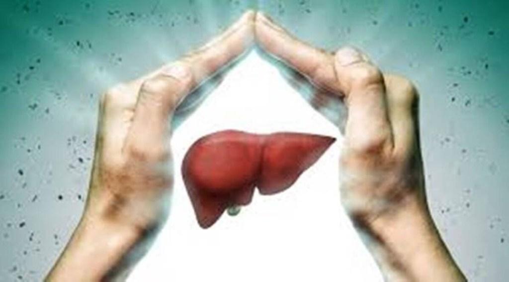fatty liver, fatty liver treatment, फैटी लिवर