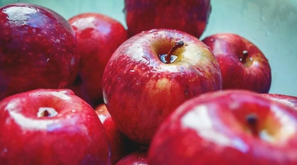 apple, himachal
