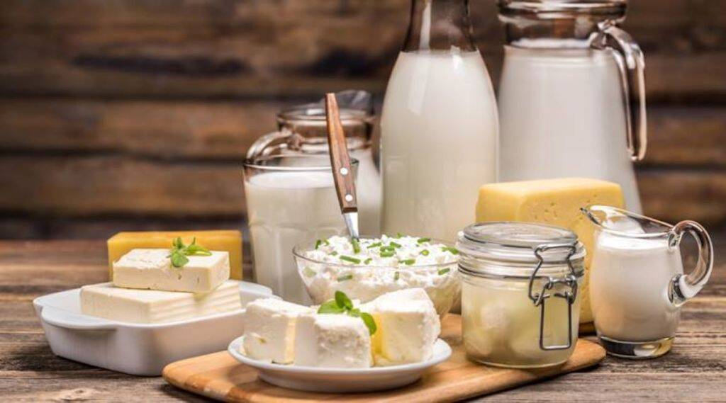 dairy Products business