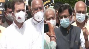 rahul gandhi, opposition march