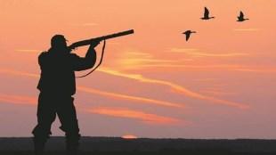 Hunt, Hunting, Bird Hunter