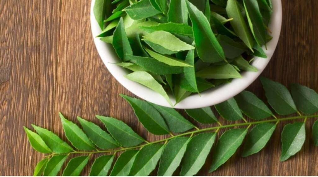 Blood Pressure, Curry Leaves, Risk Of High Blood Pressure