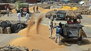 PMGKAY, 600 lakh tonnes of food grains, Free delivery till November, Corona, Modi government