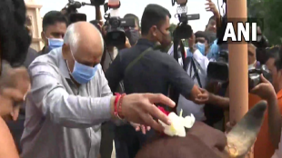 Gujarat, CM Bhupendra Patel, Cow worship, Oath taking ceremony