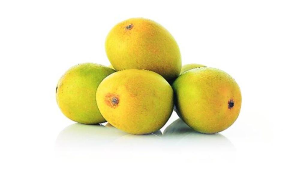 Health News, Mango In Uric Acid, Uric Acid