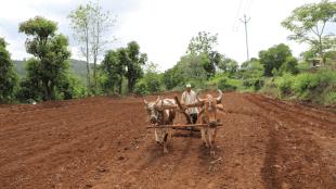 Farmer, State News, Utility News