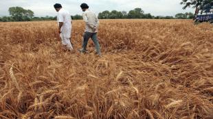 damaged crops, farmers, new delhi