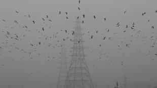 delhi smog, pollution in delhi, state news